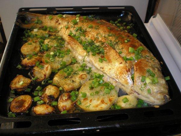 рецепты приготовления шеи в духовке