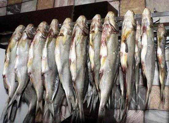 Как правильно замариновать речную рыбу в домашних условиях
