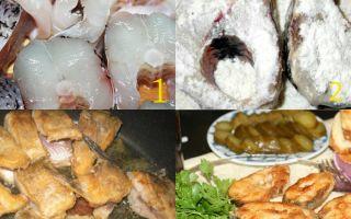 Простой рецепт приготовления щуки жареной