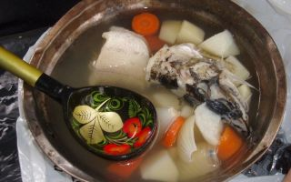 Уха из леща — вкусное ароматное блюдо